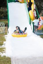 Winter Wonderland 2019 Photo Thumbail